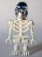 Akator Skeleton