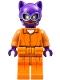 Catwoman - Prison Jumpsuit and Belt (70912)